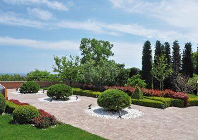 8658-UA-Odessa-Privatgarten-Pinus-mugo-Kugel