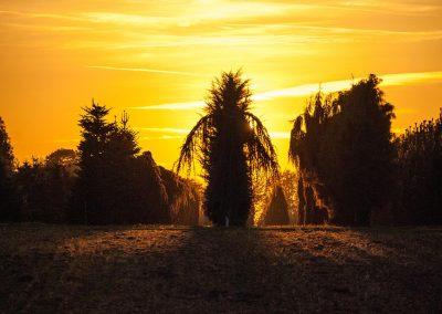 Sonnenuntergang im Quartier